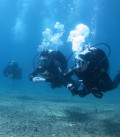 Diving in Cabo de Palos