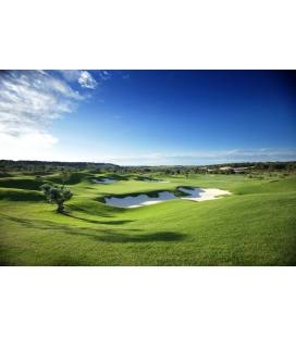 18 Hoyos Las Colinas Golf & Country Club
